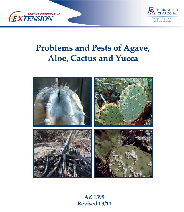 Problems and pests of Agave